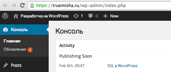 SSL в админке WordPress