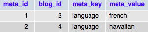 Таблица wp_blogmeta при установленном WordPress Мультисайт
