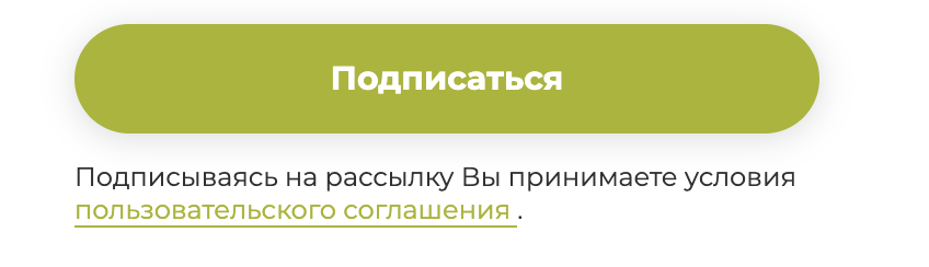 пример использования get_privacy_policy_url()